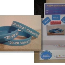 wristbands & display box